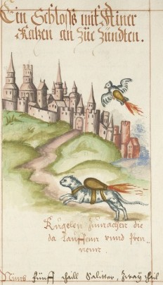 Rocket Cat from 16th century manuscript
